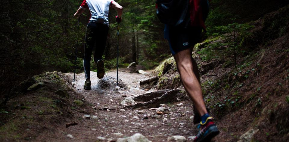 Performance & Endurance